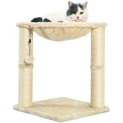 AmazonBasics Cat Condo