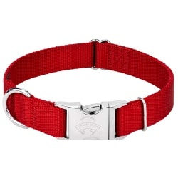 Country Brook Petz | Premium Nylon Dog Collar with Metal Buckle