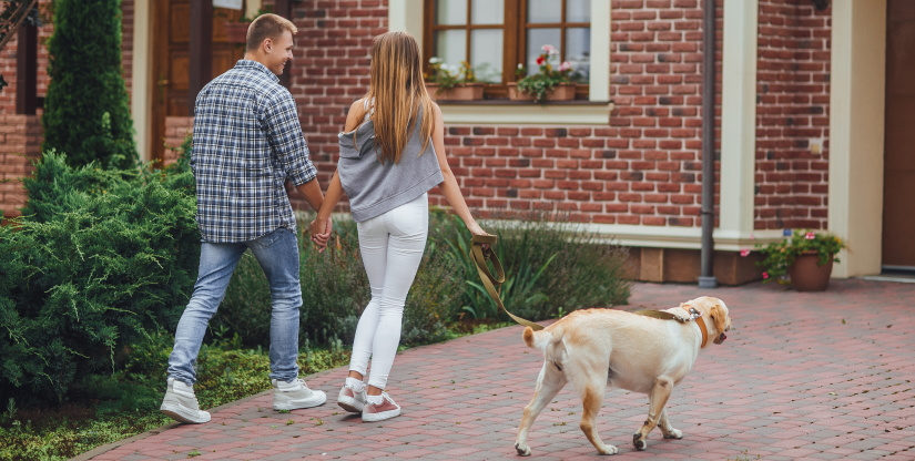 Young couple walking with a dog near home