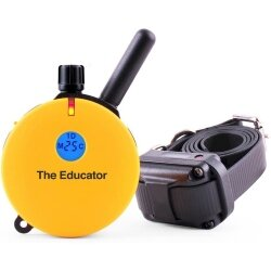 Educator E-Collar