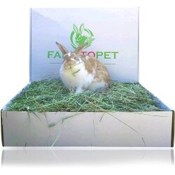 """Farm to Pet """"Best"""" 2nd Cutting Timothy hay"""