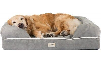 Friends Forever Orthopedic Dog Bed