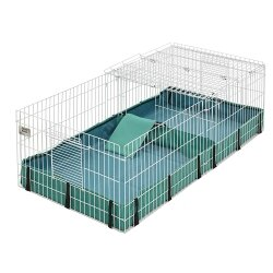 Guinea Pig Cage by Midwest