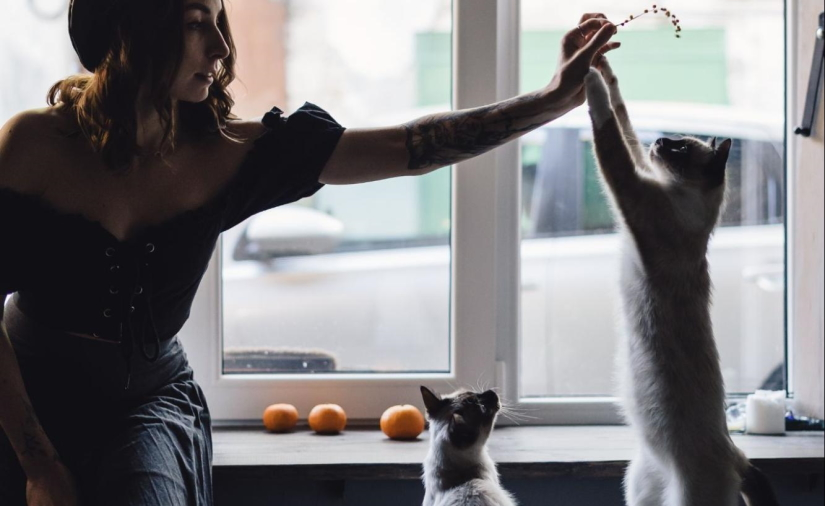 Woman plays with her cats